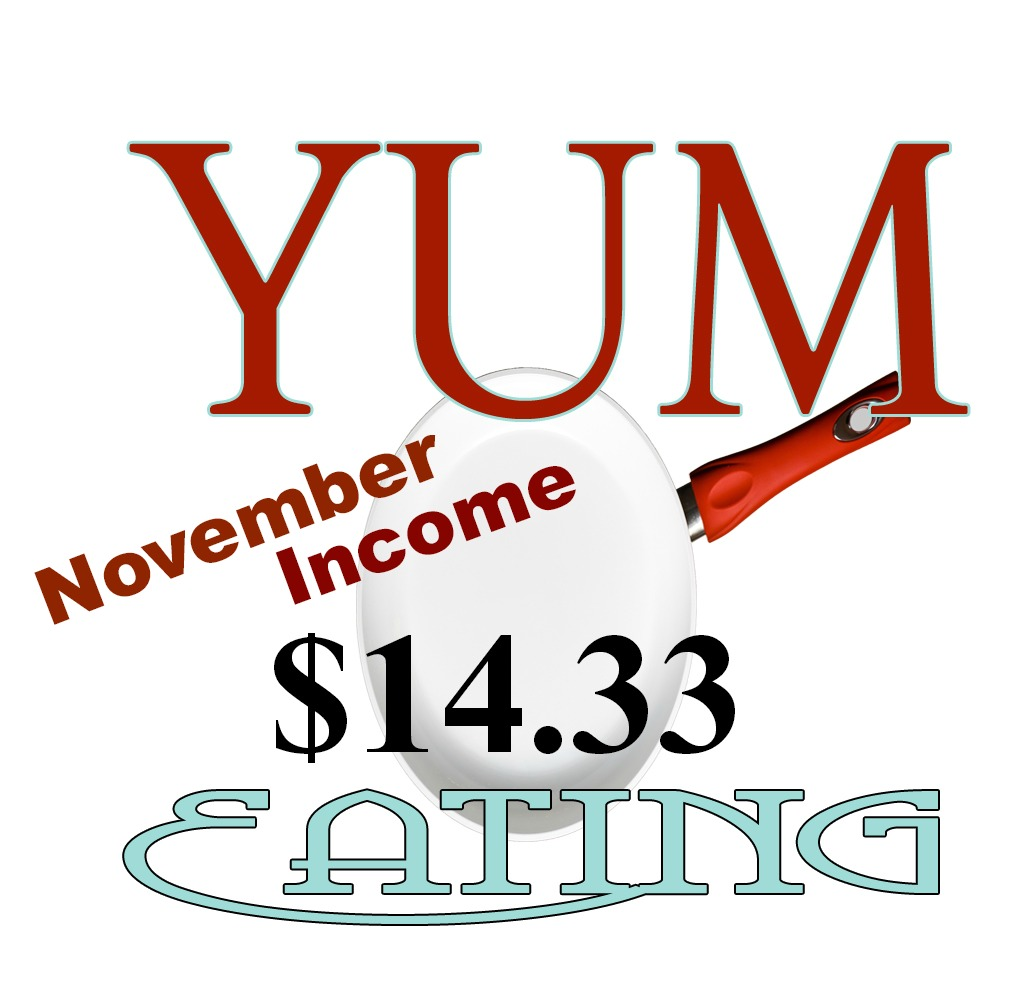 Monthly Income - november2013