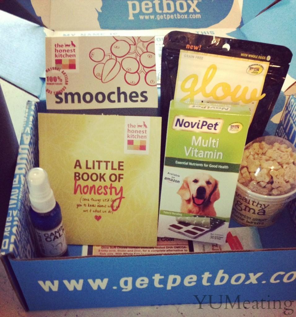 box full of pet goodies