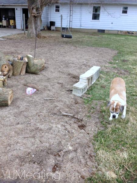 trash to treasure garden bench
