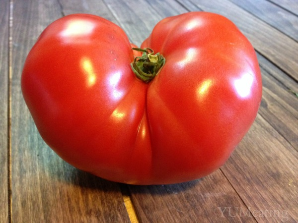 big tomato from market