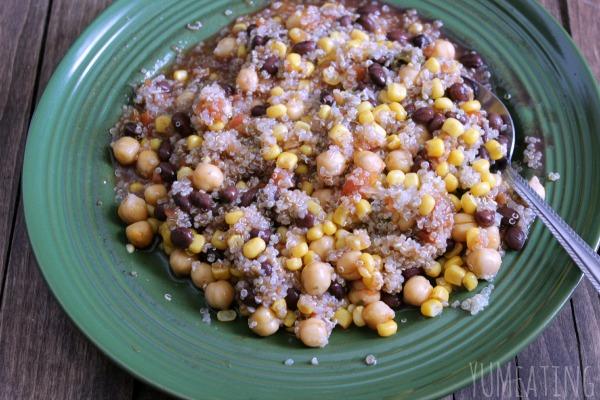 Vegetarian Quinoa Enchillada