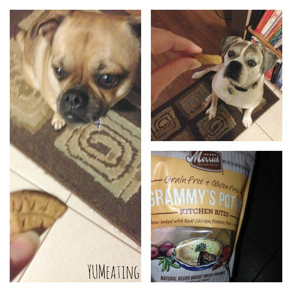 Paws Up for Grammy's Pot Pie | YUM eating