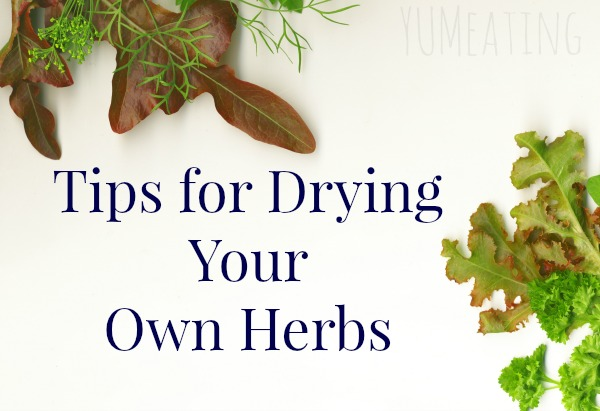 Tips for Drying Your Own Herbs | YUM eating