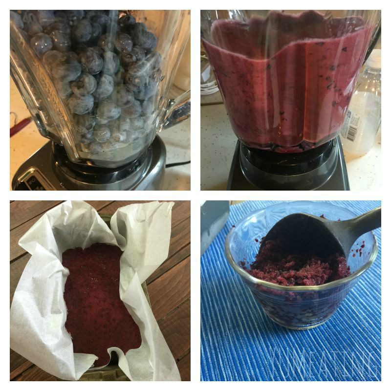Blueberry Lemon Sorbet | YUM eating