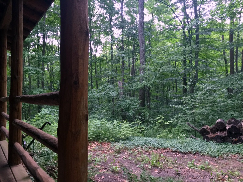 Weekend Getaway: Rustic Cabin Life {Bellaire, MI} | Nevermore Lane #travel #tinyhouse #cabin #nature #solitude #thankful