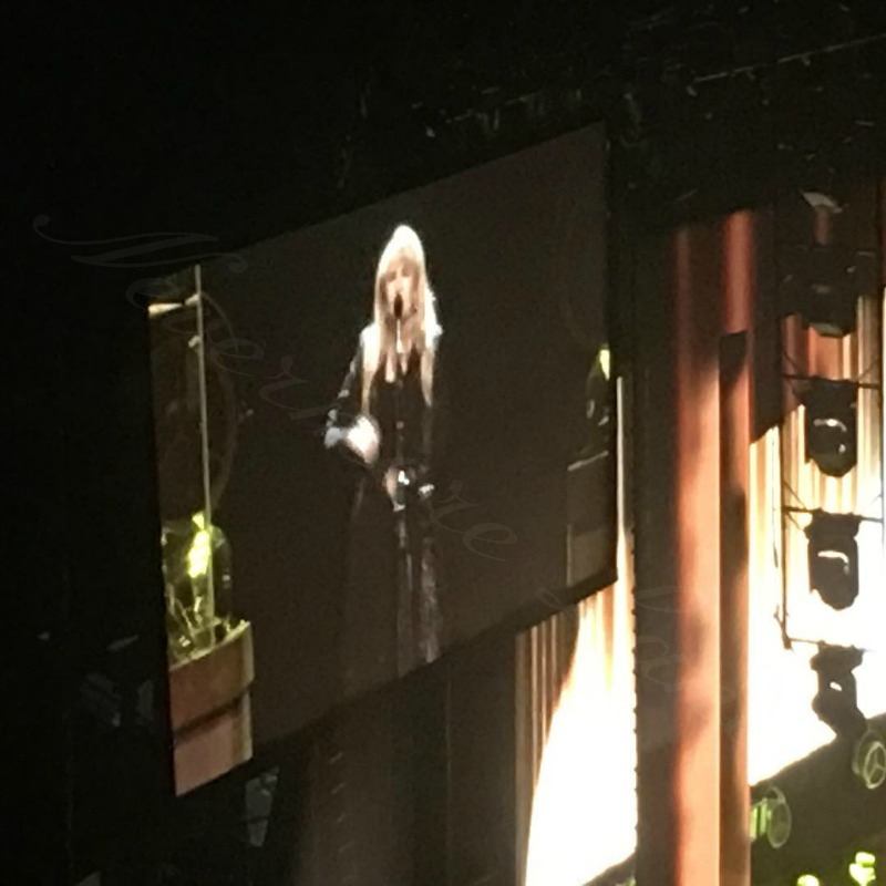 A Night With Stevie Nicks | Nevermore Lane